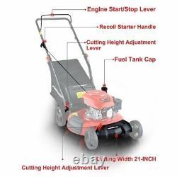 Push Lawn Mower 170cc with Steel Deck PowerSmart 21 3-in-1 Gasoline