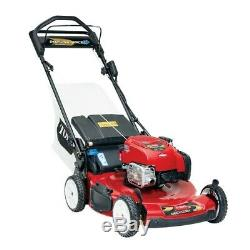 Recycler 22 in. Briggs and Stratton Personal Pace Self Propelled Gas Walk-Behind