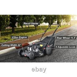 22gas Automoteur Marcher Derrière Lawnmower Grandes Roues Arrière Roulant Sur Bumpy